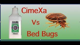 Cimexa Dust vs Bed Bugs