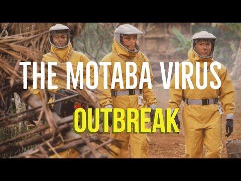 The Motaba Virus (Outbreak Explored)
