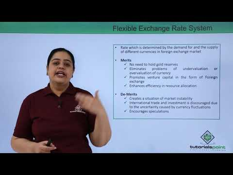 Flexible Exchange Rate System