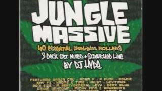 Wicked Wicked Jungle Is Massive (Ali G Indahouse)