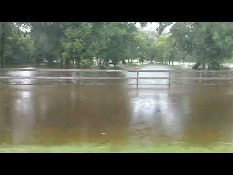 Brazos River flooding 2017