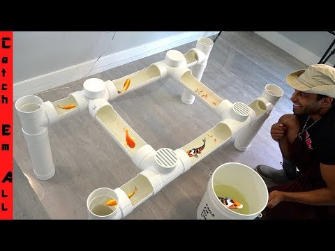 FISH TABLE AQUARIUM **Cheap Diy Step By Step PVC PIPE Build At Home*