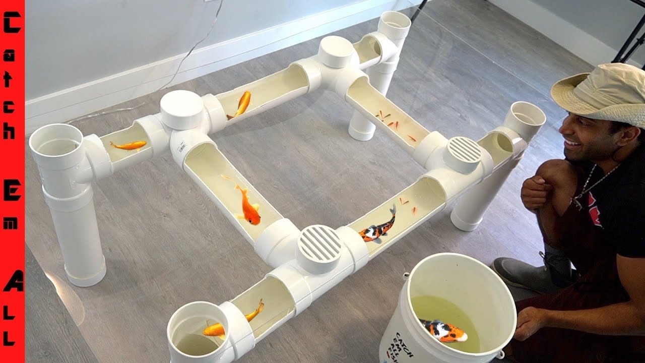 Fish Table Aquarium Cheap Diy Step By Step Pvc Pipe Build At Home Youtube