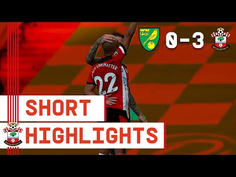 Norwich Southampton Goals And Highlights