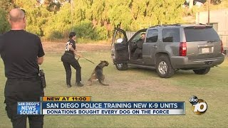 San Diego Police Training New K-9 Units