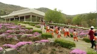 봄꽃의 대향연 금강수목원