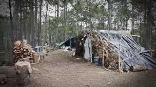 #Chiapas Comunidad 1oAGOSTO - 57 personas desplazadas por la CIOAC-H