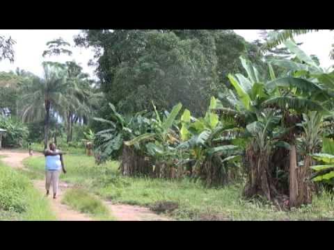 Osusu = Sierra Leone Comedy -Part 2/4