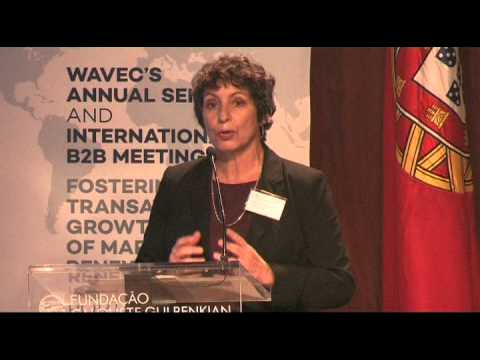 WavEC Annual Seminar 2014 - Panel III PARTNERING WITH THE PRIVATE SECTOR AND CO-FINANCING