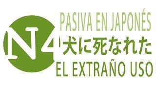 El extraño uso de la pasiva en japonés - JLPT N4 Curso NOKEN thumbnail