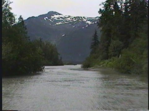 Jet Boating - Stikine River to Shakes Glacier - Wrangell, AK