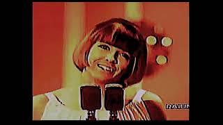 Sanremo 1965 Wilma Goich * Le colline sono in fiore YouTube Videos