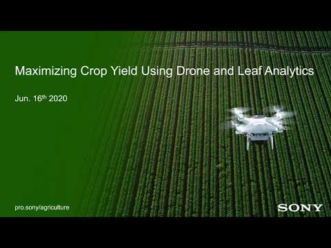 Maximizing Crop Yield Using Drone And Leaf Analytics