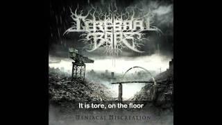 "CEREBRAL BORE ""The Bald Cadaver"" (HD) with lyrics"
