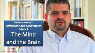 Reflections and Meditations, episode 5: The Mind and the Brain (Bernardo Kastrup)