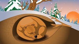 Почему медведь зимою спит. Школьная песня из далекого детства