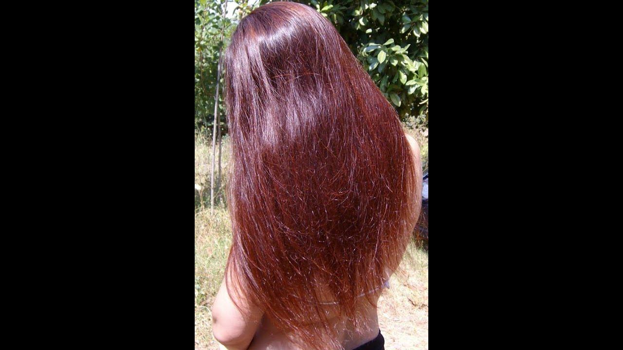 Applicare lolio di cocco a che i capelli mettere