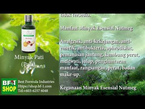 Pati Minyak Wangi Aromatik - Pala (Nutmeg)