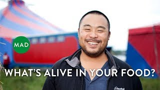 Food Microbiology: An Overlooked Frontier   David Chang