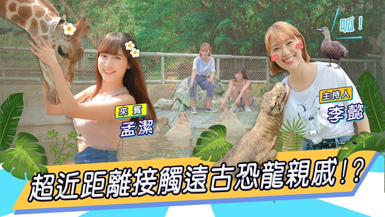 現實版動物森友會,李懿與奇特動物的第一次接觸 Feat. 孟潔【懿想天開EP42】