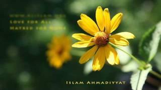 Islam Ahmadiyyat