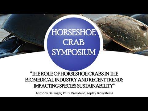 American Fisheries Society - Horseshoe Crab Symposium Presentation