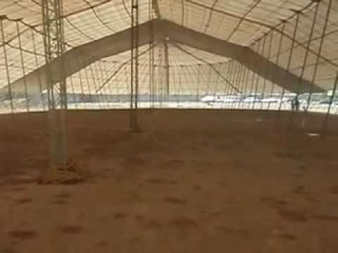 Renta de Carpas estilo Circo en Monterrey, Guadalupe, Apodaca, Santa Catarina