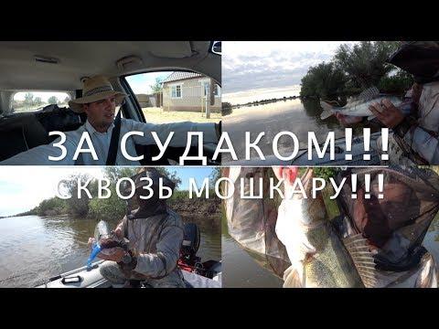 зимняя рыбалка на карася - 2017-06-28 17:40:42