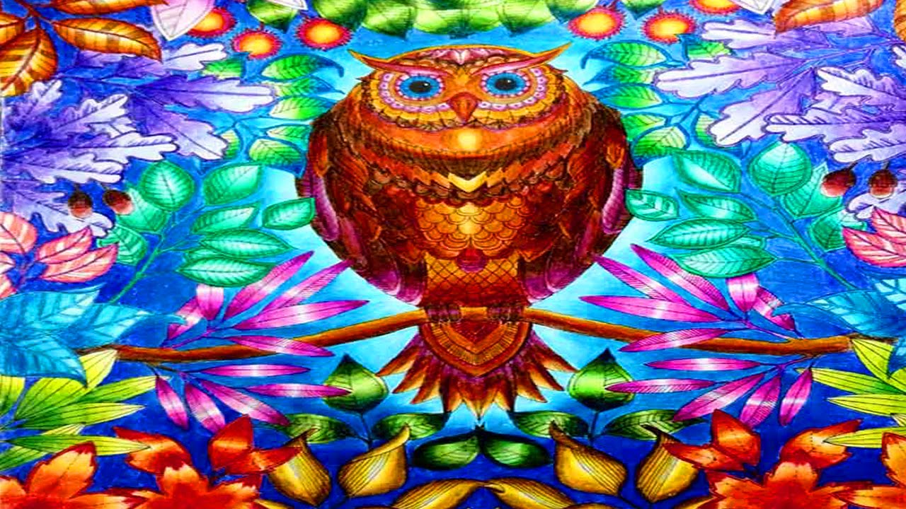 Secret Garden Coloring Book Owl