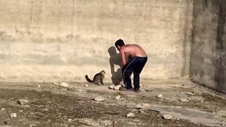 Rescate de un gato montes super cabreado de una balsa