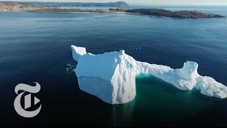Newfoundland Iceberg Looms 15 Stories Tall    The New York Times
