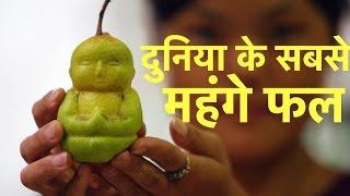 दुनिया के 10 सबसे महंगे फल | World's 10 Most Expensive Fruits in Hindi !