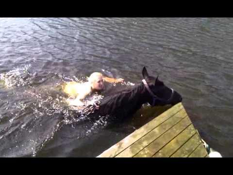 Årets første bad for 2 og 4 beinte 2011
