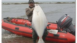 ловля камбалы с берега на донную снасть | fishing for flounder(, 2015-07-19T22:29:48.000Z)