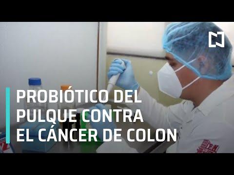 Descubren bacteria que inhibe células de cáncer de colon - Paralelo 23