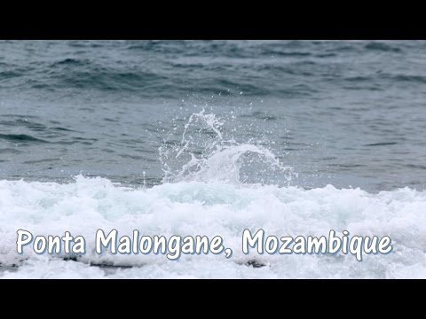 Ponta Malongane, Mozambique || The Purple Gypsy