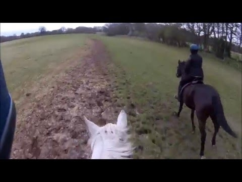 Peover Horse Fun Ride 19/04/15 Cheshire