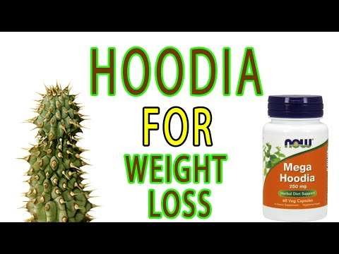 How to use hoodia gordonii for weight loss