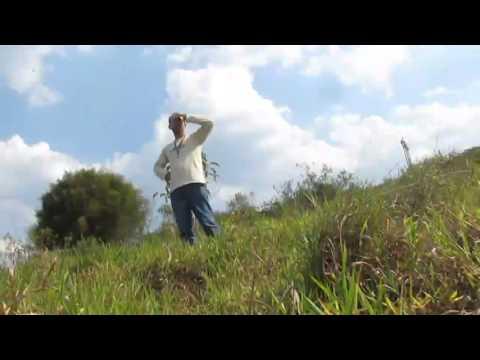 Vídeo inédito mostra desespero durante rompimento de barragem em Mariana