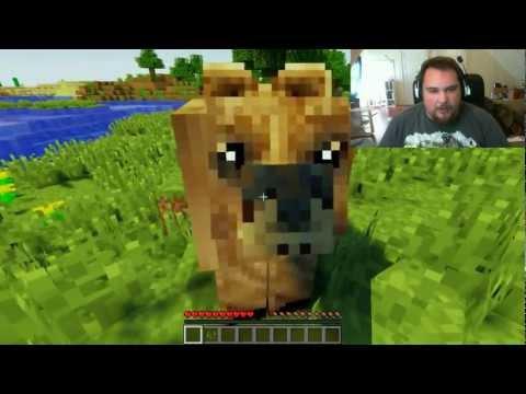 I Found a Bear!