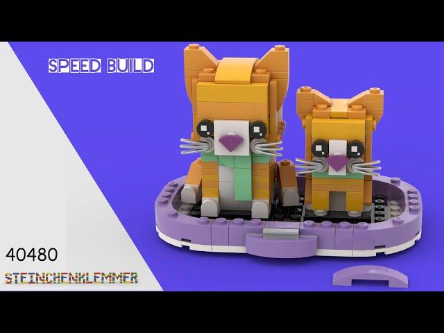 40480 Rot getigerte Katze | Speed Build