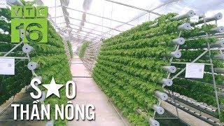 24 tuổi sở hữu vườn rau thủy canh 4.0 tiền tỷ | VTC16