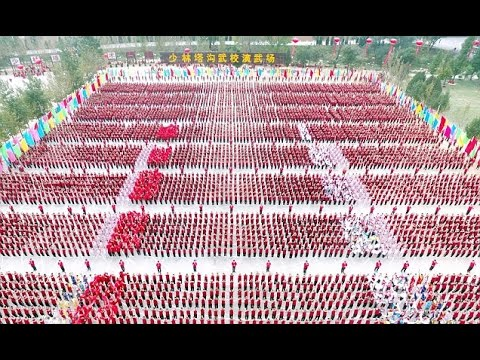 THAT'S teamwork Amazing aerial footage shows the incredible patterns formed by Kung Fu students