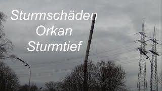 Sturmschäden Orkan Sturmtief Friederike 2018 in Herne NRW Deutschland