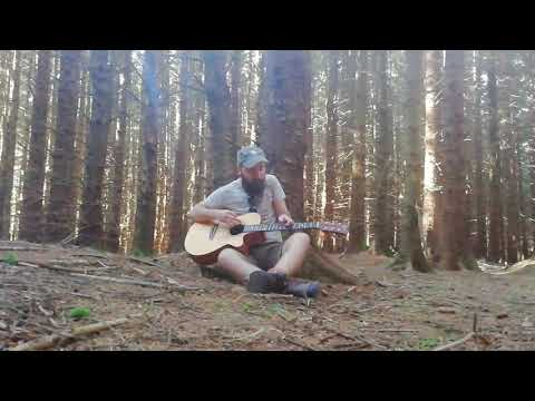 Matthew Frederick • 'Dust Cloud' • (Live in The Forest)