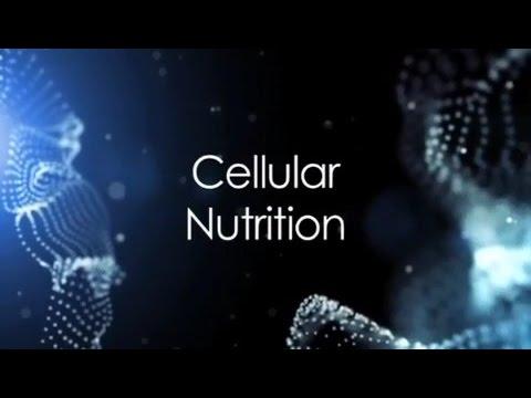 (E07) Cellular Nutrition