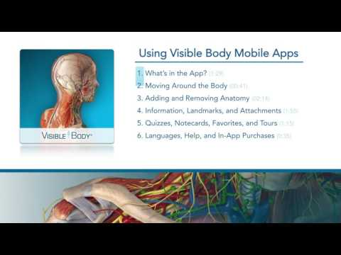 Using the Visible Body App - Videos - Visible Body Human