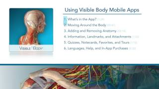 Introduction to Human Anatomy Atlas 2017 Edition (iPhone and Android phone) | Visible Body