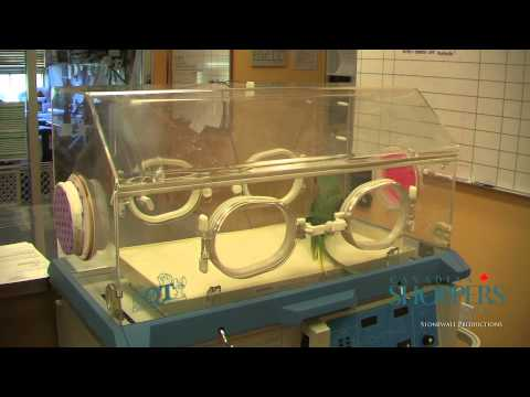 DeWinton Pet Hospital - Calgary - CSC Merchant Affiliate