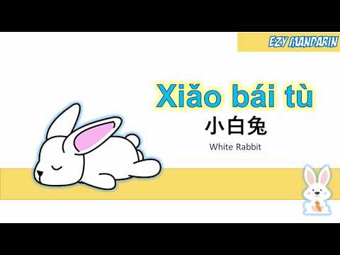 Xiao Bai Tu - White Rabbit Lyric Mandarin Kid Song Nursery Rhymes